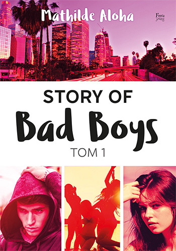 Story of Bad Boys